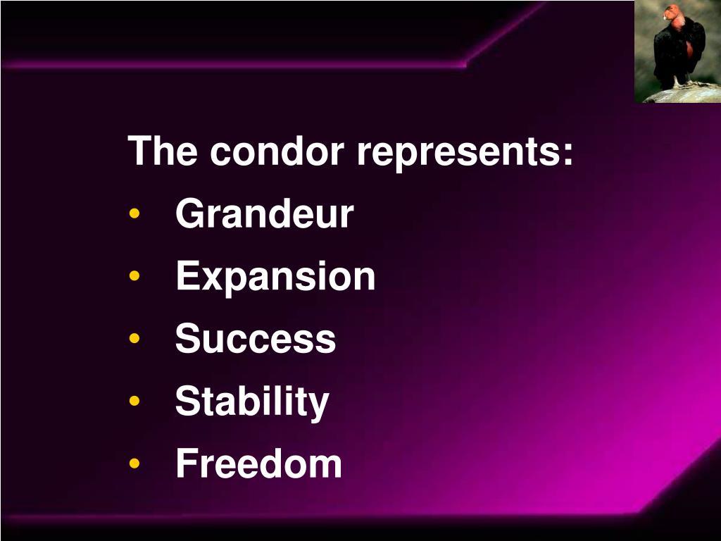 The condor represents: