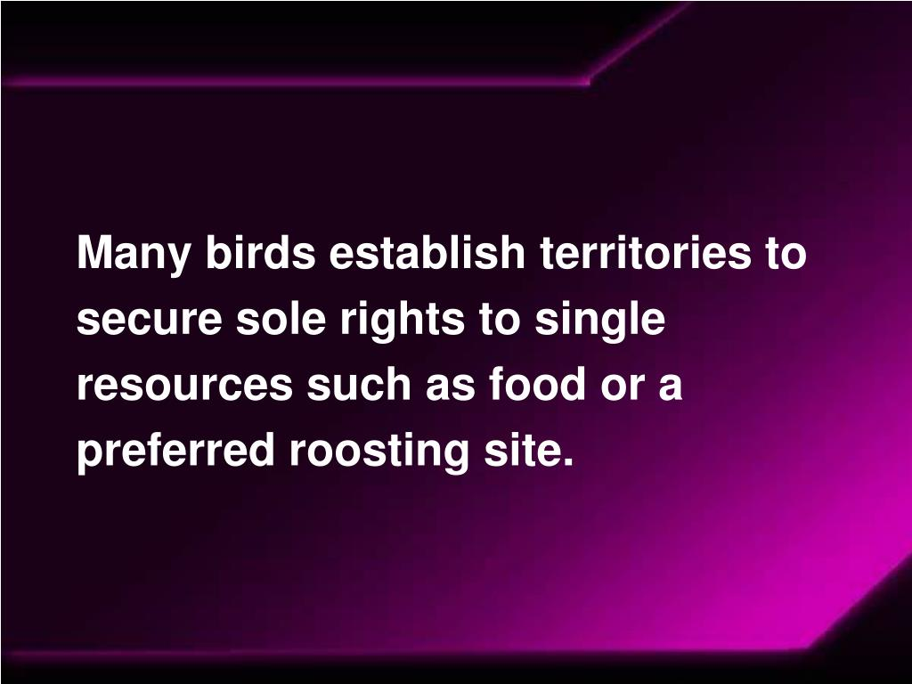 Many birds establish territories to secure sole rights to single resources such as food or a preferred roosting site.