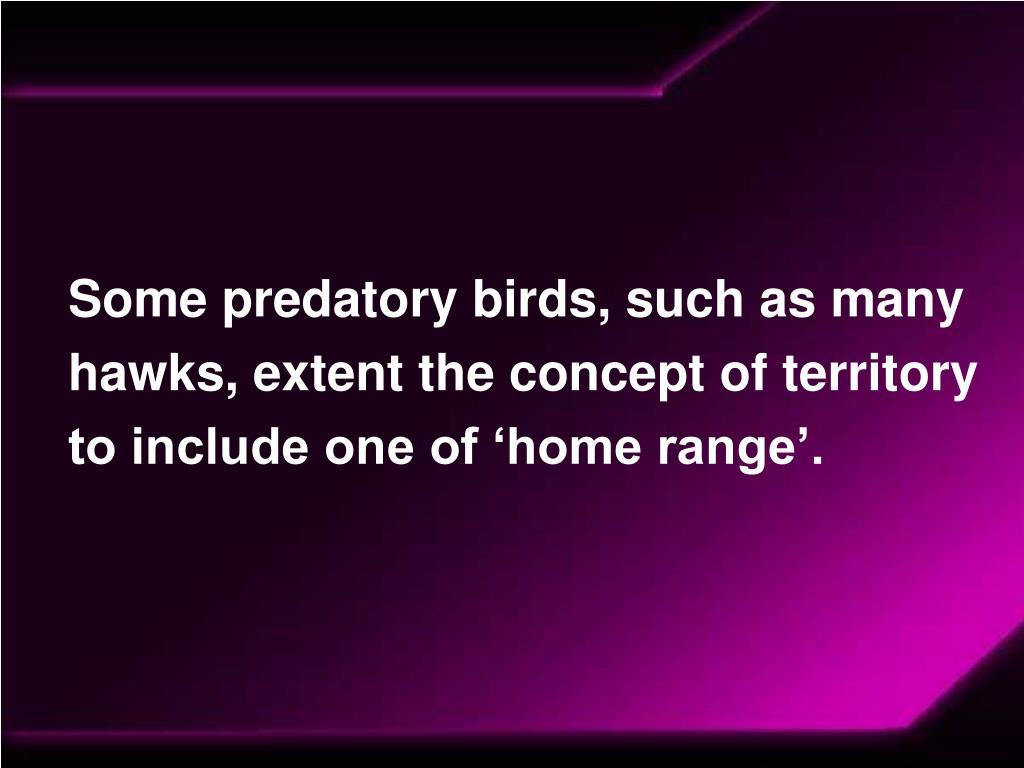 Some predatory birds, such as many hawks, extent the concept of territory to include one of 'home range'.