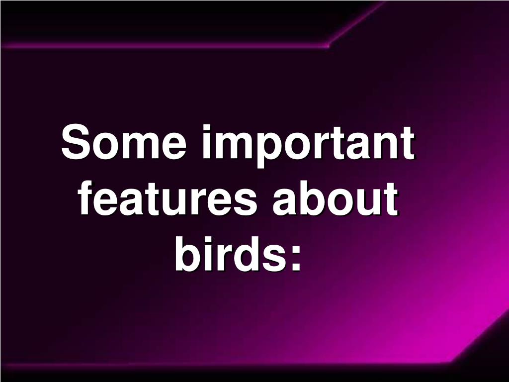 Some important features about birds: