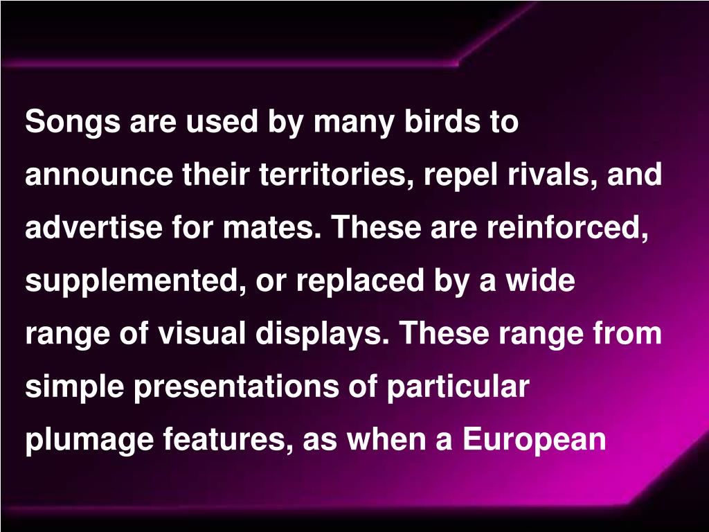 Songs are used by many birds to announce their territories, repel rivals, and advertise for mates. These are reinforced, supplemented, or replaced by a wide range of visual displays. These range from simple presentations of particular plumage features, as when a European
