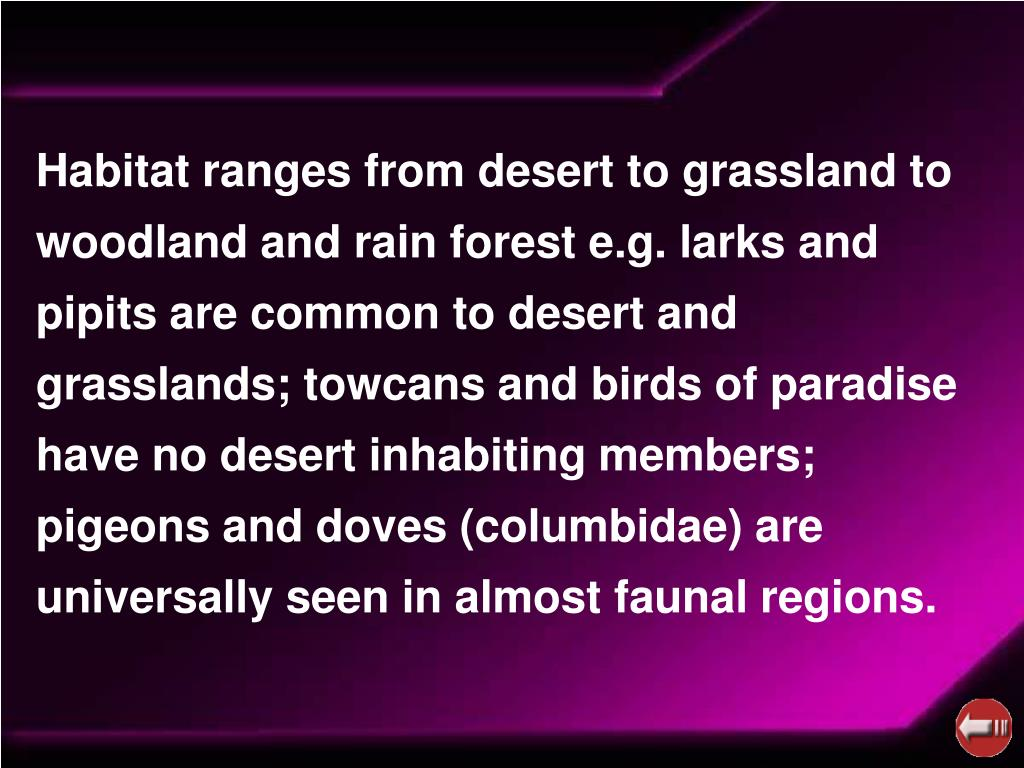 Habitat ranges from desert to grassland to woodland and rain forest e.g. larks and pipits are common to desert and grasslands; towcans and birds of paradise have no desert inhabiting members; pigeons and doves (columbidae) are universally seen in almost faunal regions.