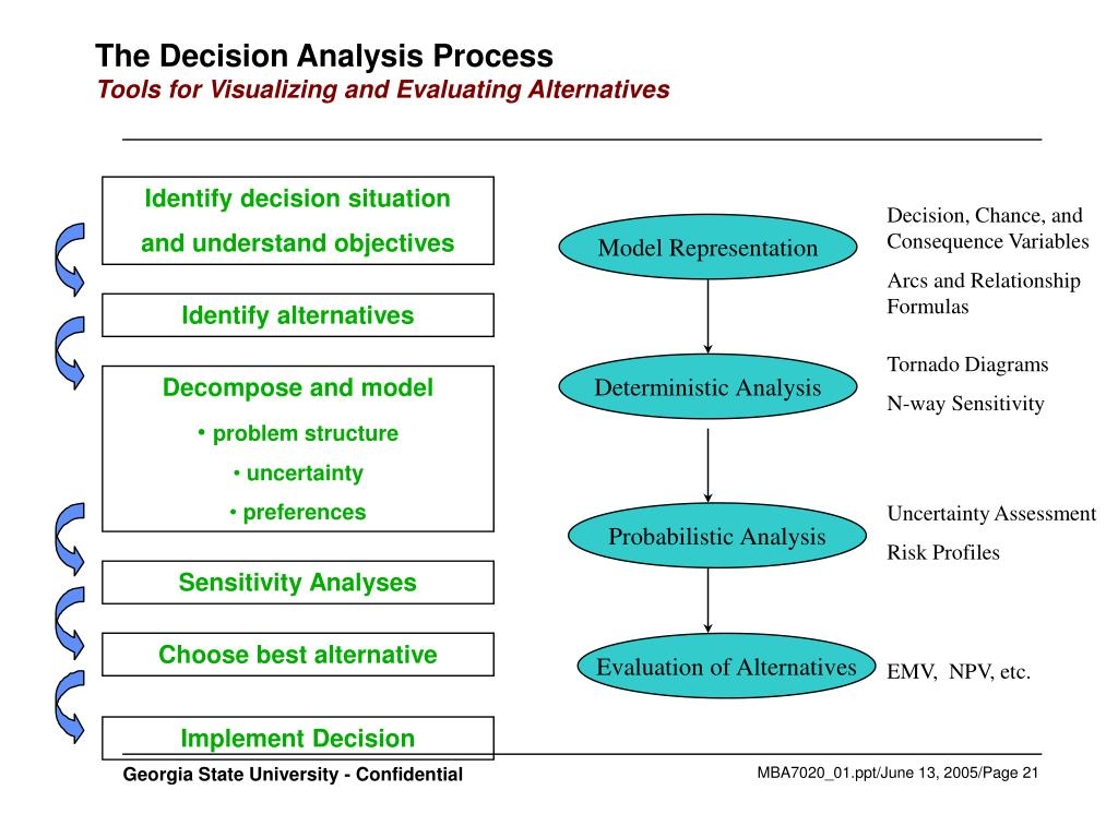 The Decision Analysis Process