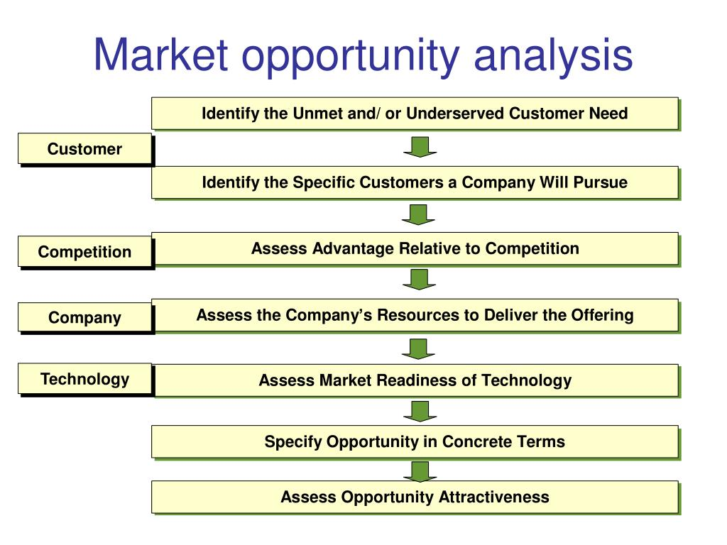 Market opportunity analysis