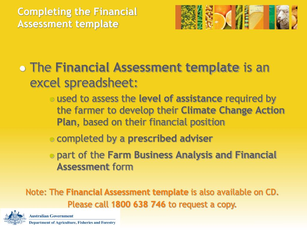 Completing the Financial Assessment template