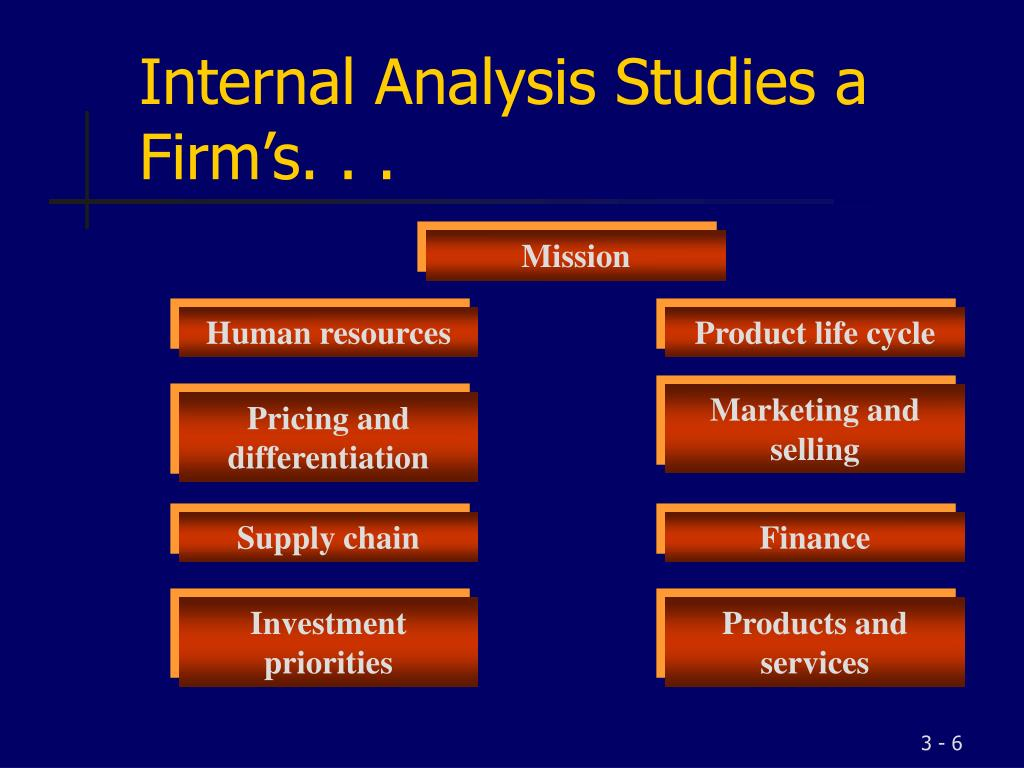 Internal Analysis Studies a Firm's. . .