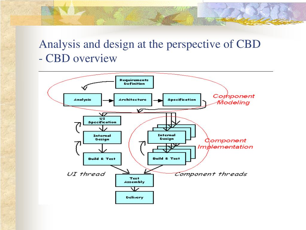 Analysis and design at the perspective of CBD