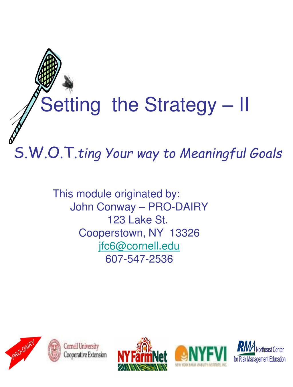 Setting  the Strategy – II