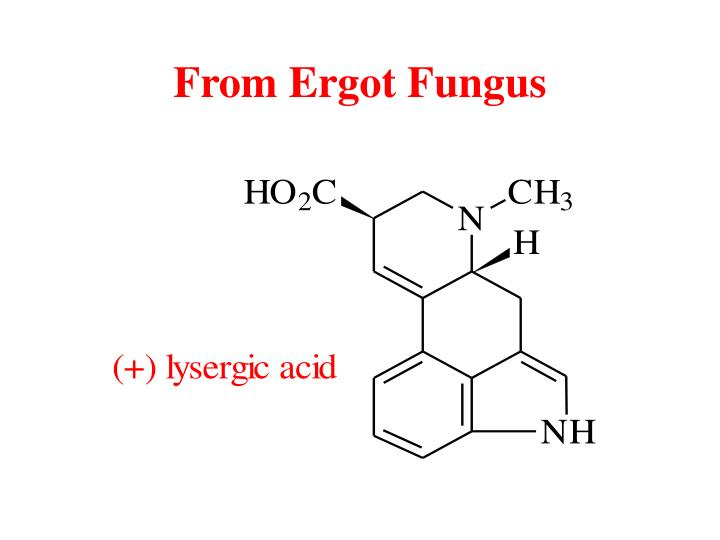 From Ergot Fungus
