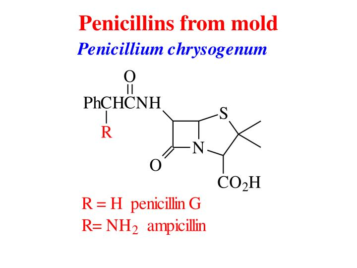 Penicillins from mold