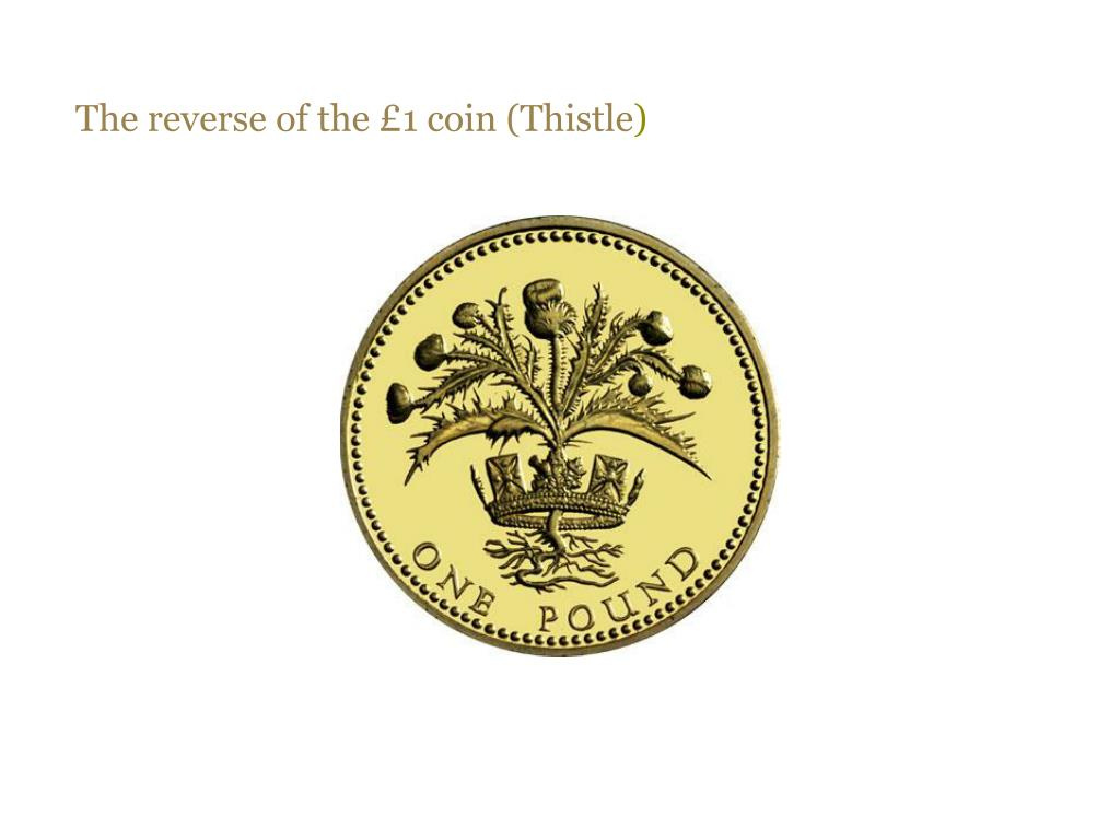 The reverse of the £1 coin (Thistle