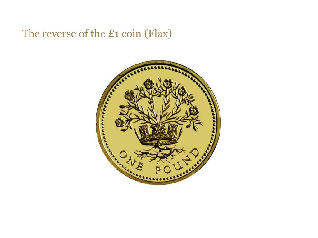 The reverse of the £1 coin (Flax)