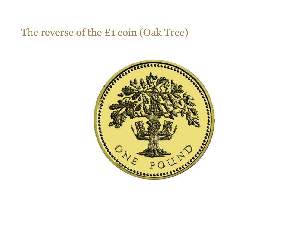 The reverse of the £1 coin (Oak Tree)