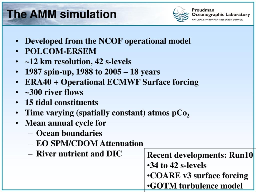 The AMM simulation