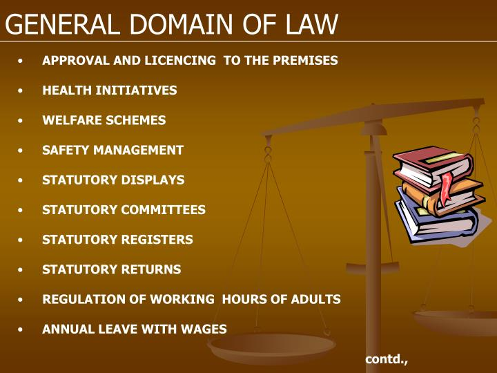 GENERAL DOMAIN OF LAW