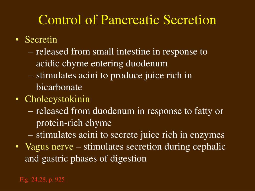 Control of Pancreatic Secretion