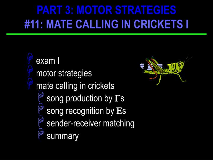PART 3: MOTOR STRATEGIES