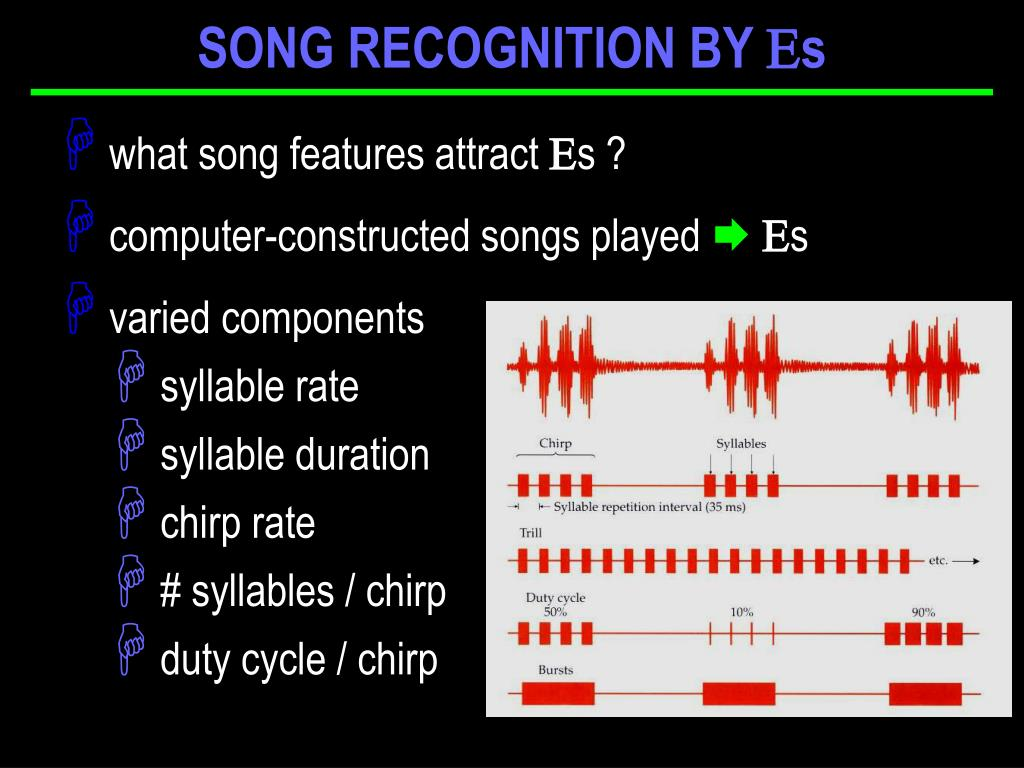 SONG RECOGNITION BY s
