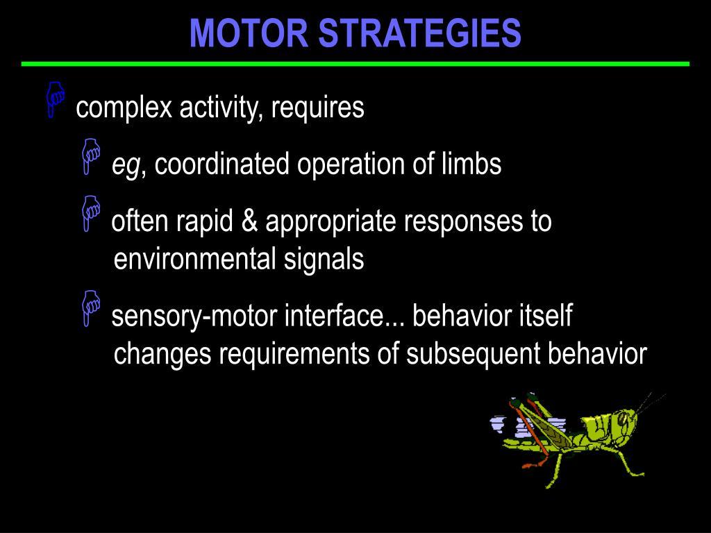 MOTOR STRATEGIES