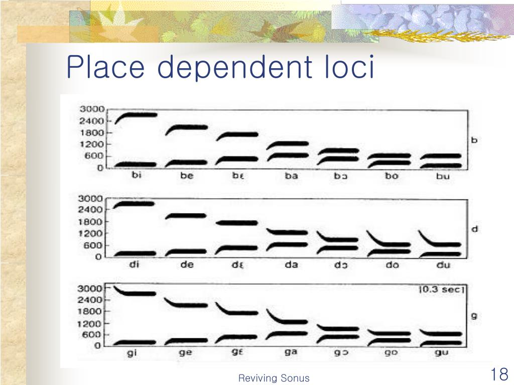 Place dependent loci