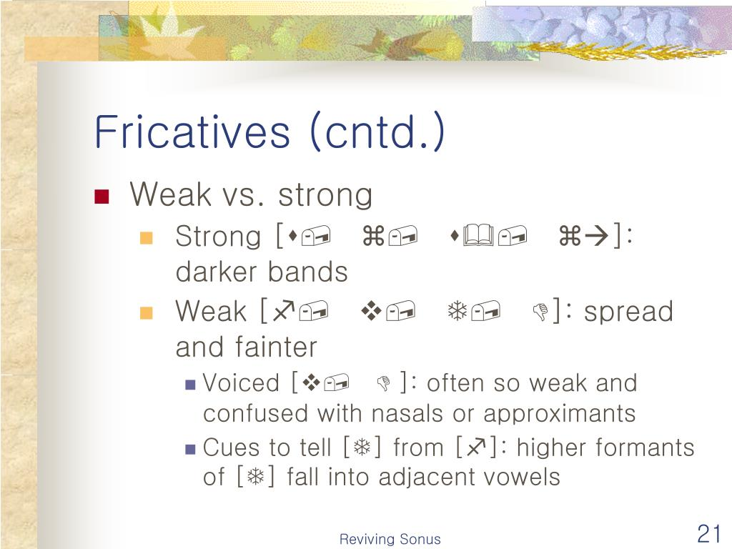Fricatives (cntd.)