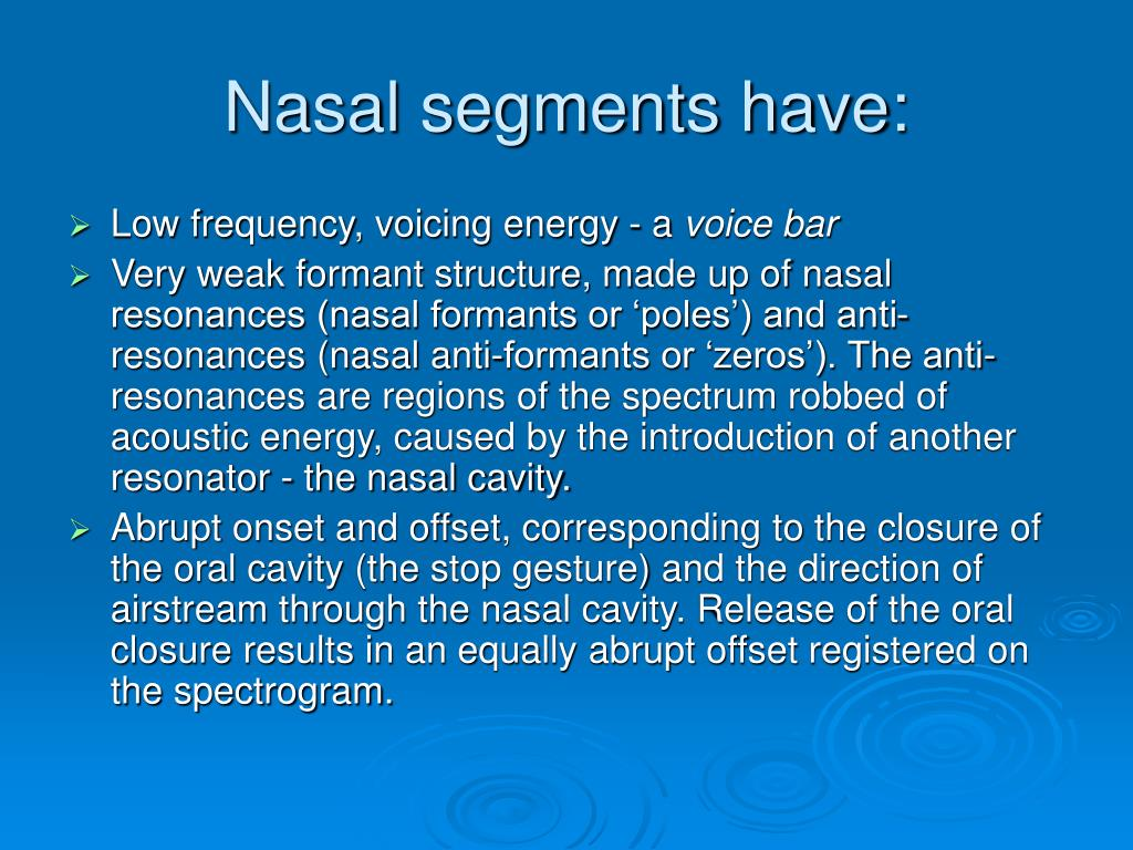 Nasal segments have: