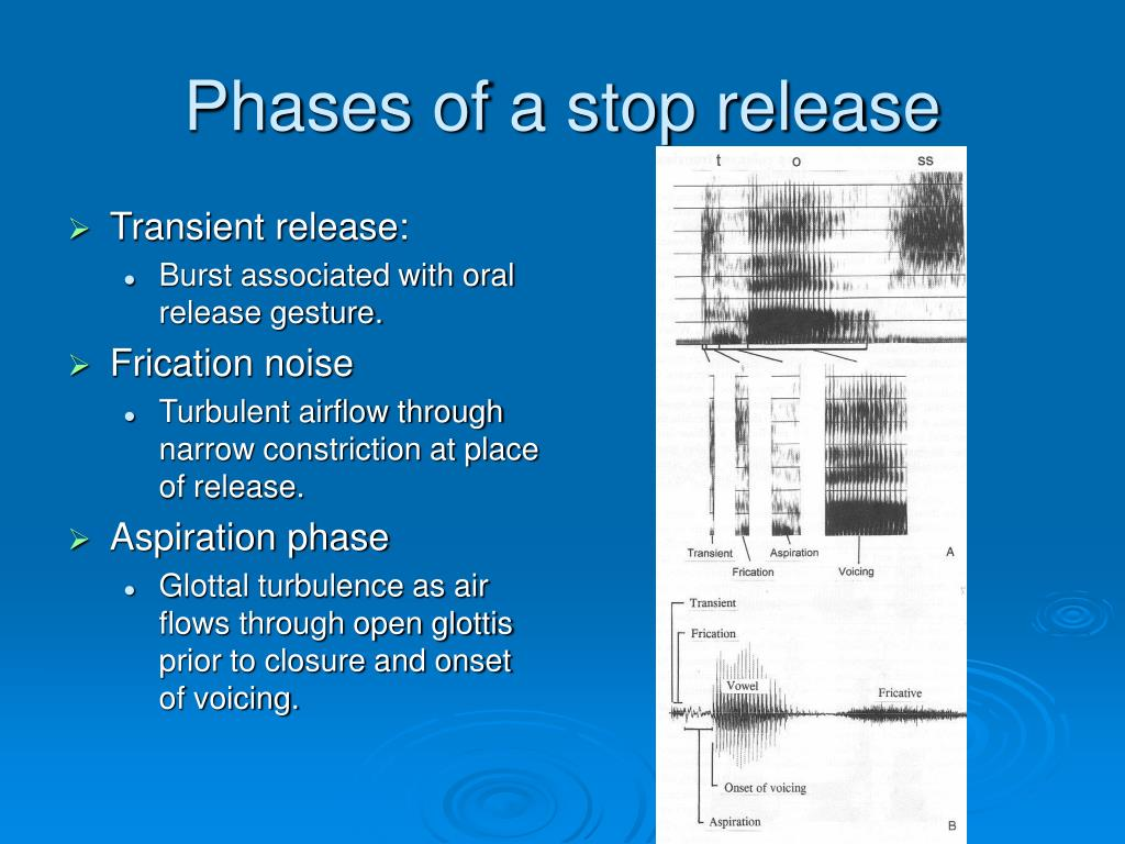 Phases of a stop release