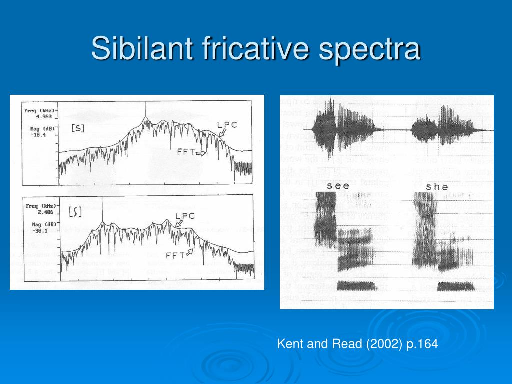 Sibilant fricative spectra