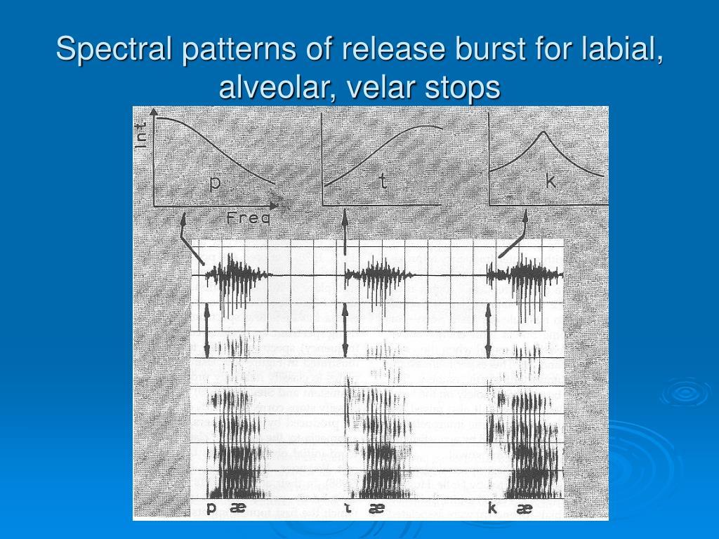 Spectral patterns of release burst for labial, alveolar, velar stops
