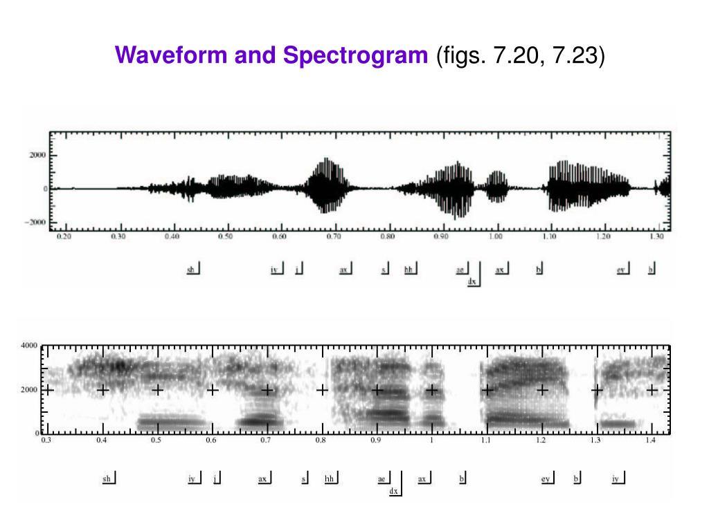 Waveform and Spectrogram