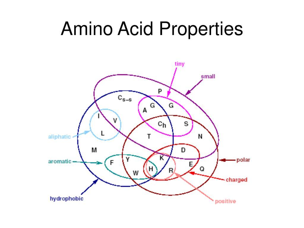 Amino Acid Properties