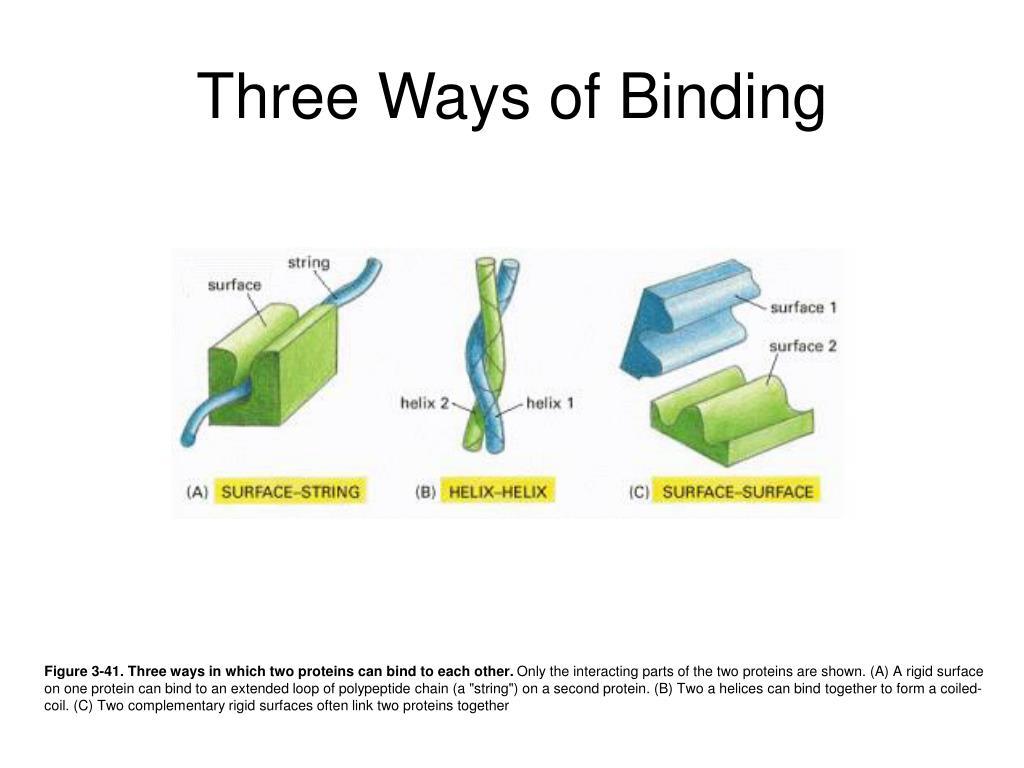 Three Ways of Binding