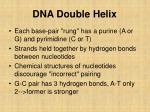 dna double helix3