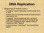 dna replication5