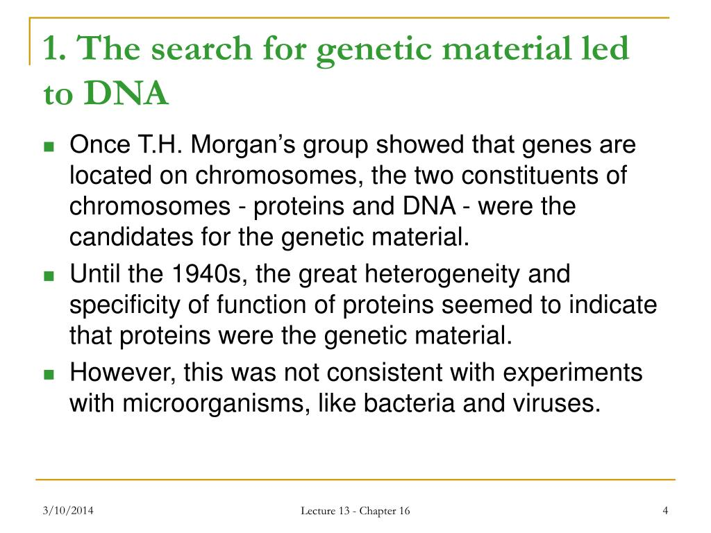 1. The search for genetic material led to DNA