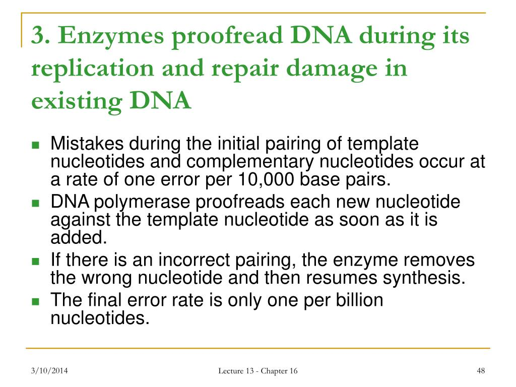 3. Enzymes proofread DNA during its replication and repair damage in existing DNA