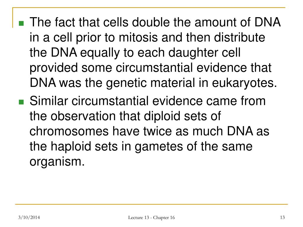 The fact that cells double the amount of DNA in a cell prior to mitosis and then distribute the DNA equally to each daughter cell provided some circumstantial evidence that DNA was the genetic material in eukaryotes.