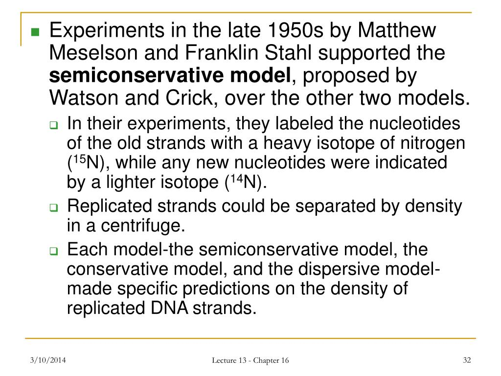 Experiments in the late 1950s by Matthew Meselson and Franklin Stahl supported the