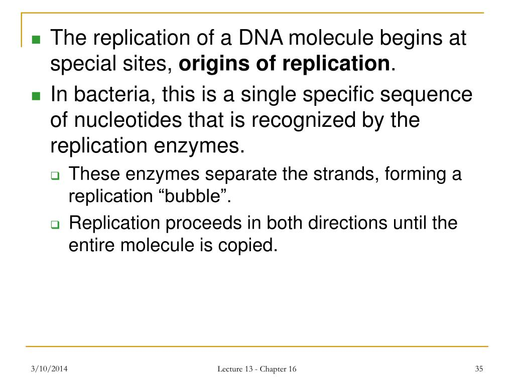 The replication of a DNA molecule begins at special sites,