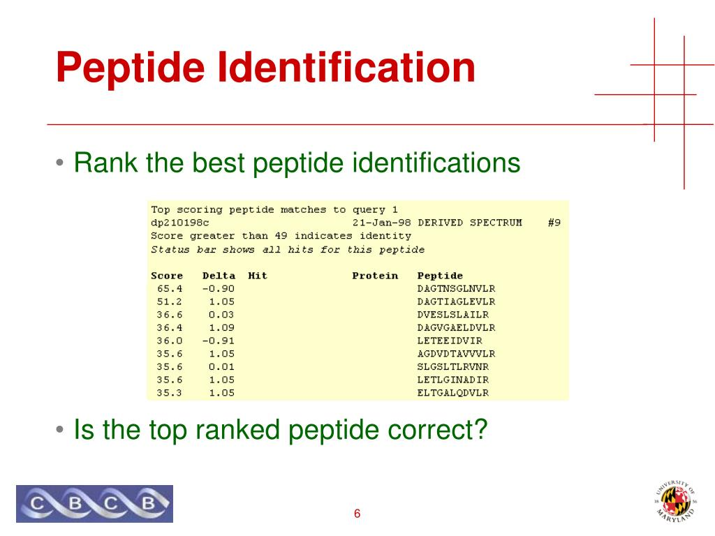 Peptide Identification