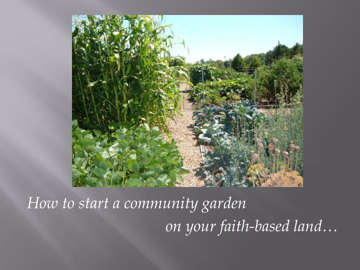 How to start a community garden