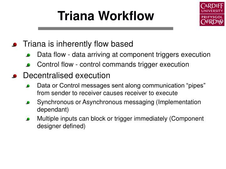 Triana Workflow