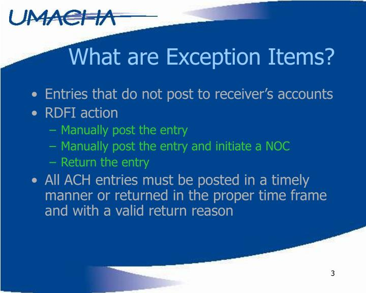 What are Exception Items?