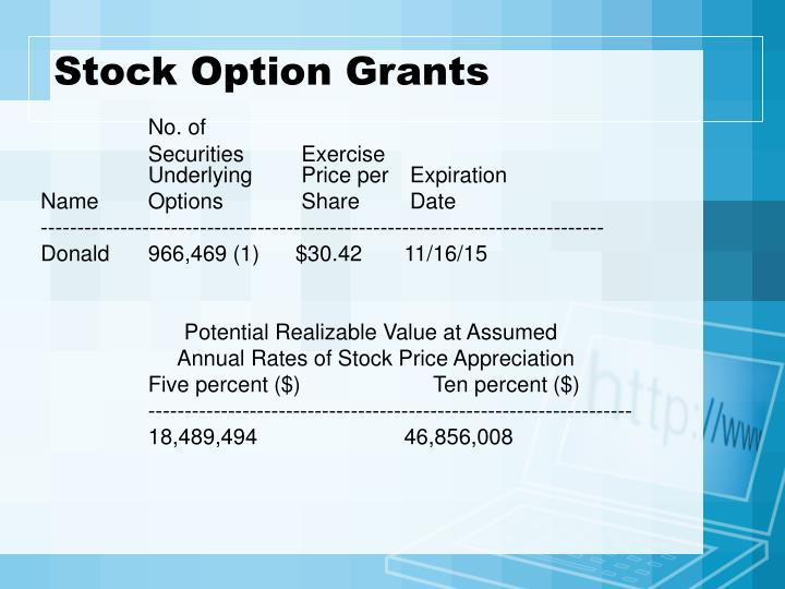 Stock Option Grants