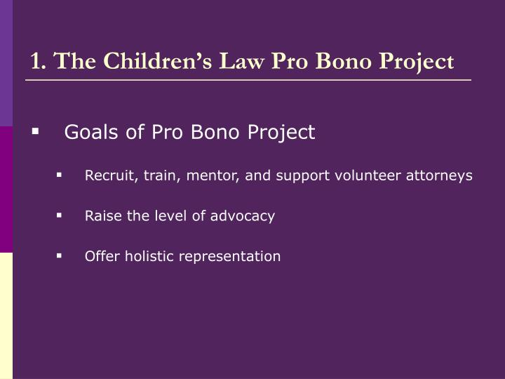 1. The Children's Law Pro Bono Project