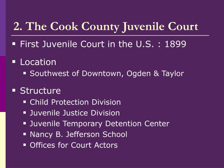 2. The Cook County Juvenile Court