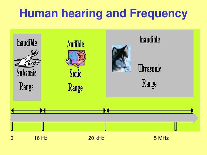 0    16 Hz             20 kHz5 MHz