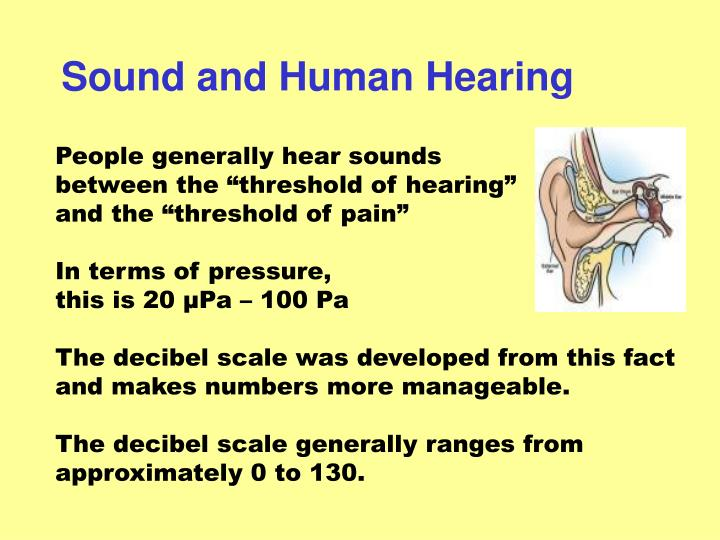 Sound and Human Hearing
