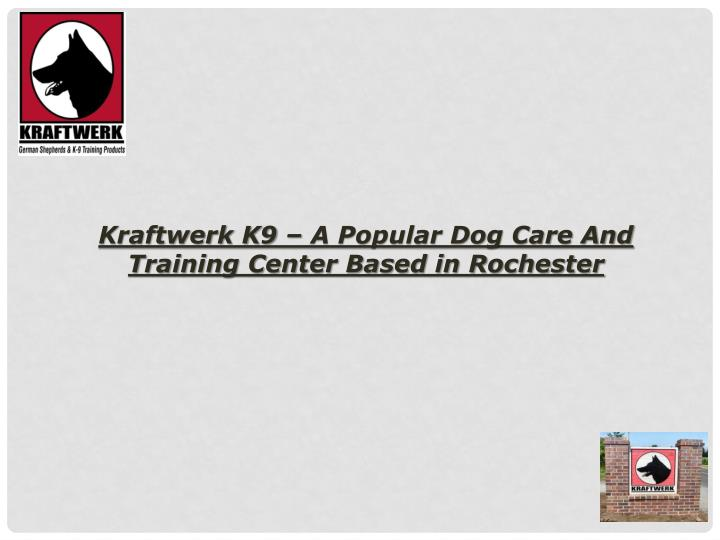 Kraftwerk K9 – A Popular Dog Care And Training Center Based in Rochester