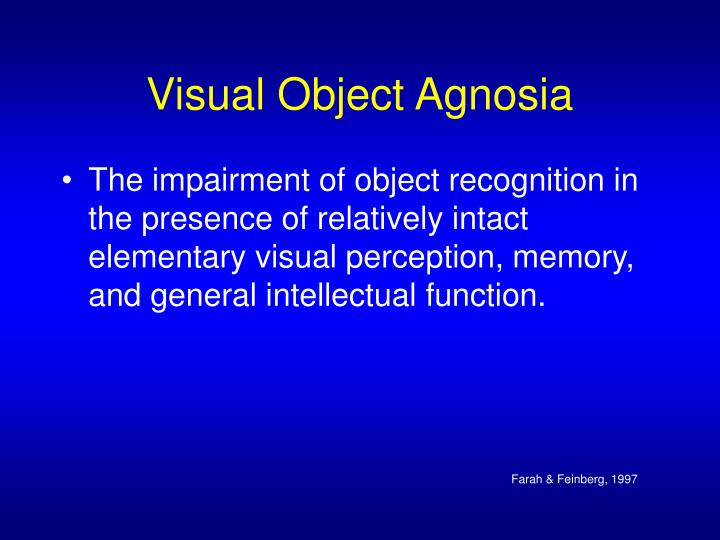 object recognition and visual perception essay Essay about visual impairment essay better how object and spatial properties are processed in visual perception and prosopagnosia essay recognition.